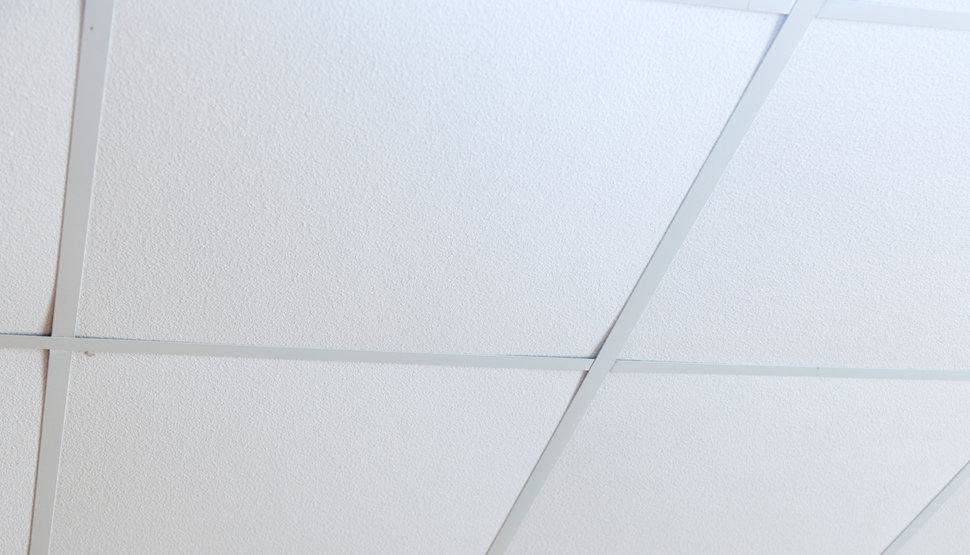 Plastic Ceiling Panels Are Used To Provide Thermal Insulation For Aesthetic Purposes Conceal Construction Features Such As Ducts And Sprinkler Piping